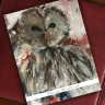 Woodland Owl Note Cards - Beth Clary Schwier